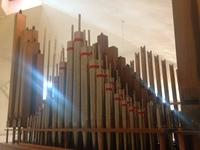 Organ Renovation Project