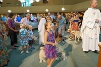 Blessing of the Animals 2014 2050